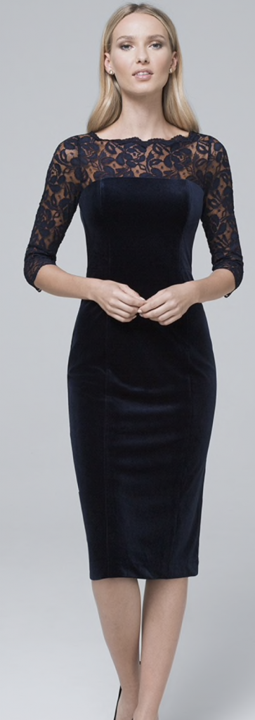 Holiday Style - Navy WHBM Velvet Dress